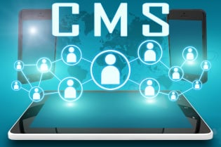 Why Enterprise Organizations Choose Expensive CMS Platforms: Off-The-Shelf Liabilities