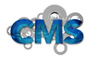 How To Determine If You Need A Custom Or An Off-The-Shelf CMS