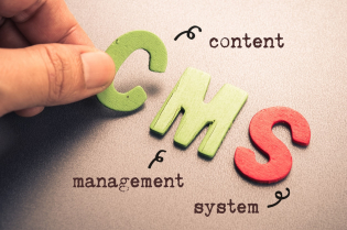 What is Your Best Option for a True Content-First CMS Platform?